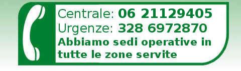 Chiamata per assistenza caldaia a Roma